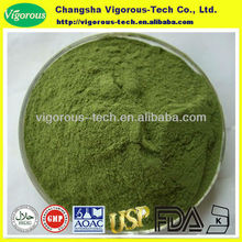 white mulberry extract/organic mulberry leaf powder/mulberry leaves extract