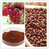 World-way Biotech provide Grape seed extract / grape seed extract powder with 40% 60% 80% polyphenols