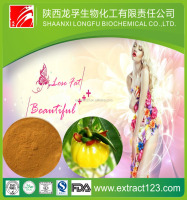 Hot Selling 100% Natural garcinia cambogia fruit extract powder