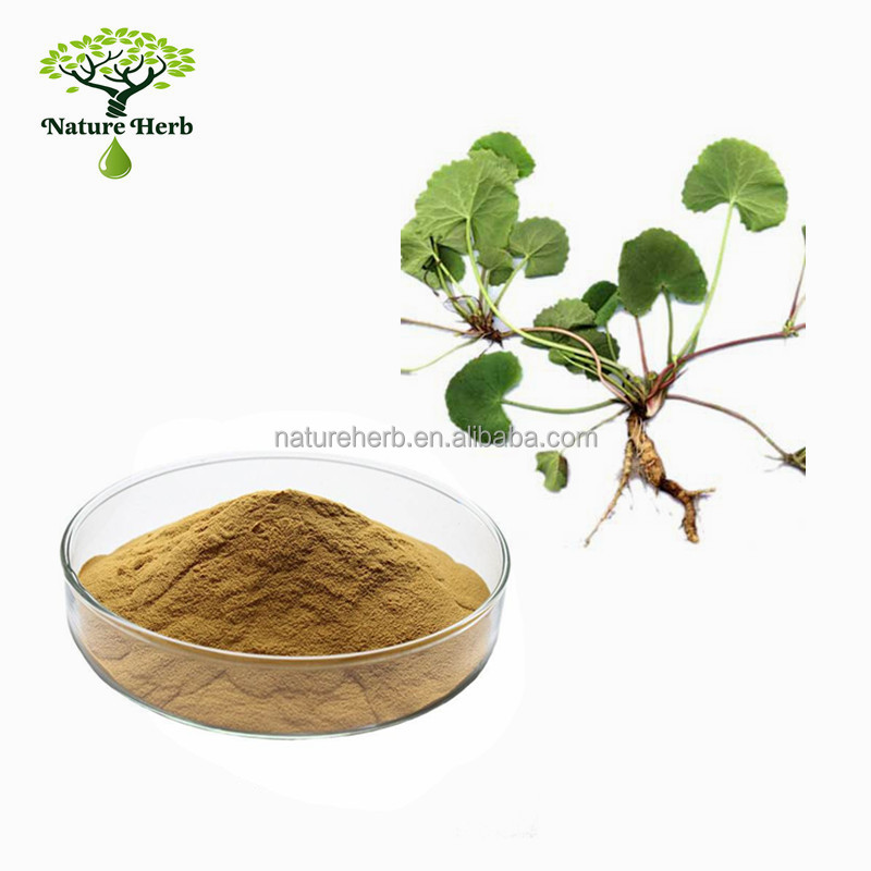 Hot Sale Low Price Gotu Kola Extract 10%~80% Asiaticoside