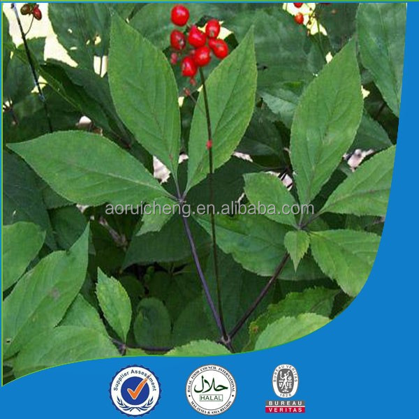 top quality ginseng oil