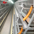 poultry feed equipment