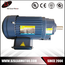 High torque 110v ac small gear reduction electric motor