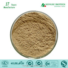 Natural Organic Chlorogenic Acids Green Coffee Bean Extract Powder