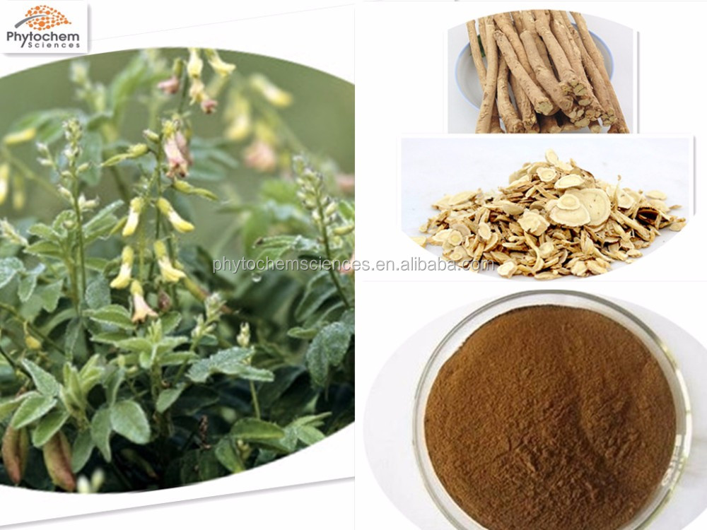 chinese herb dong quai extraction for anti-aging