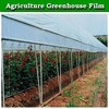 Greenhouse Roofing Material Pe Greenhouse Film