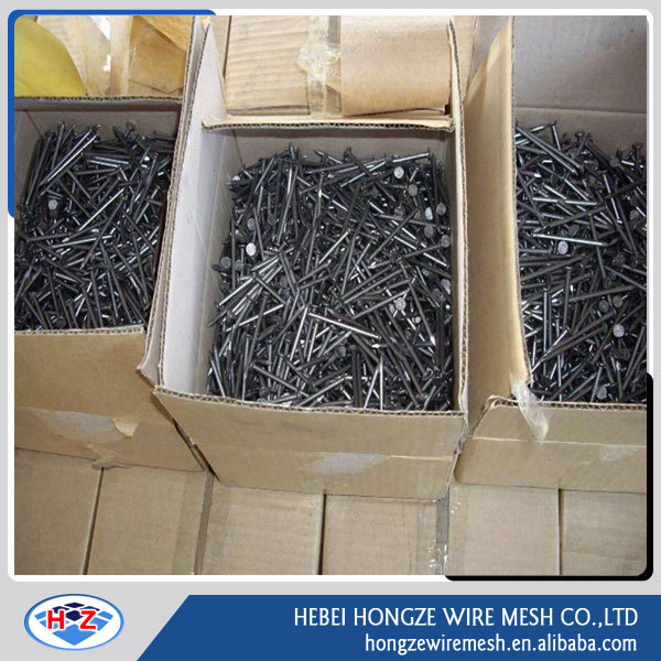 normal head iron material 0.8mm smooth common wire nail from Anping China