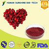Natural Fruit Extract Bactericidal Cranberry Extract with Competitive Price