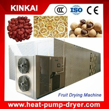 Hot sell small electric dragon fruit dryer machine