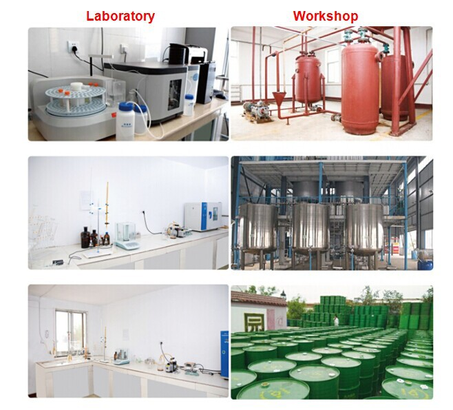 lab&workshop.jpg
