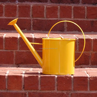 Vintage galvanized metal watering can water pot with long spout
