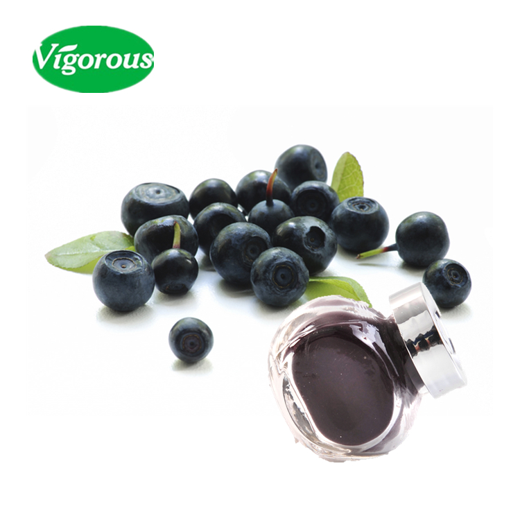 natural brazilian acai berry extract / Euterpe Oleracea 25% anthocyanidins / high quality acai berry extract powder