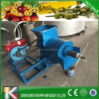 China good supplier Professional palm fruit oil making machine