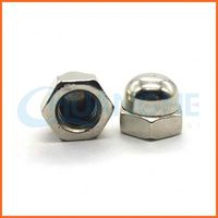 China fastener metal blind hexagon cap nuts