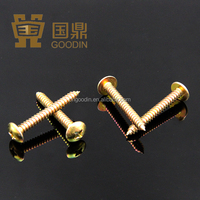 TRUSS HEAD SELF TAPPING SCREW,SELF-TAPPING SCREW