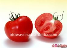 Organic Tomato Juice Concentrate