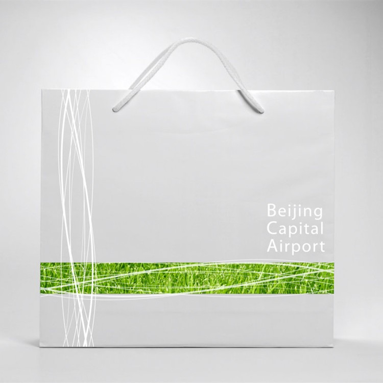 Low Cost Custom White/Brown Kraft Paper Shopping Gift Bag