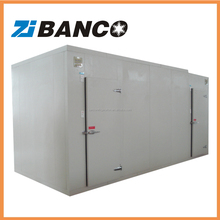 Small size refrigerator blast freezer cold room for frozen meat