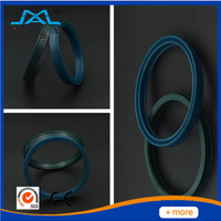 Hydraulic Piston cylinder CFW oil seals with Low price