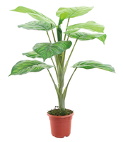 0151 (YY015) Stocks cheap artificial plants and trees