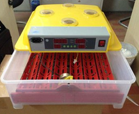 China brand 60 eggs incubator/ Small mini chicken eggs incubator/ bird egg incubator