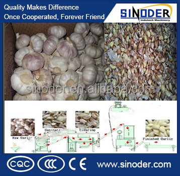 2016 hot selling garlic clove separating and garlic peeling plant used for garlic production processing production line