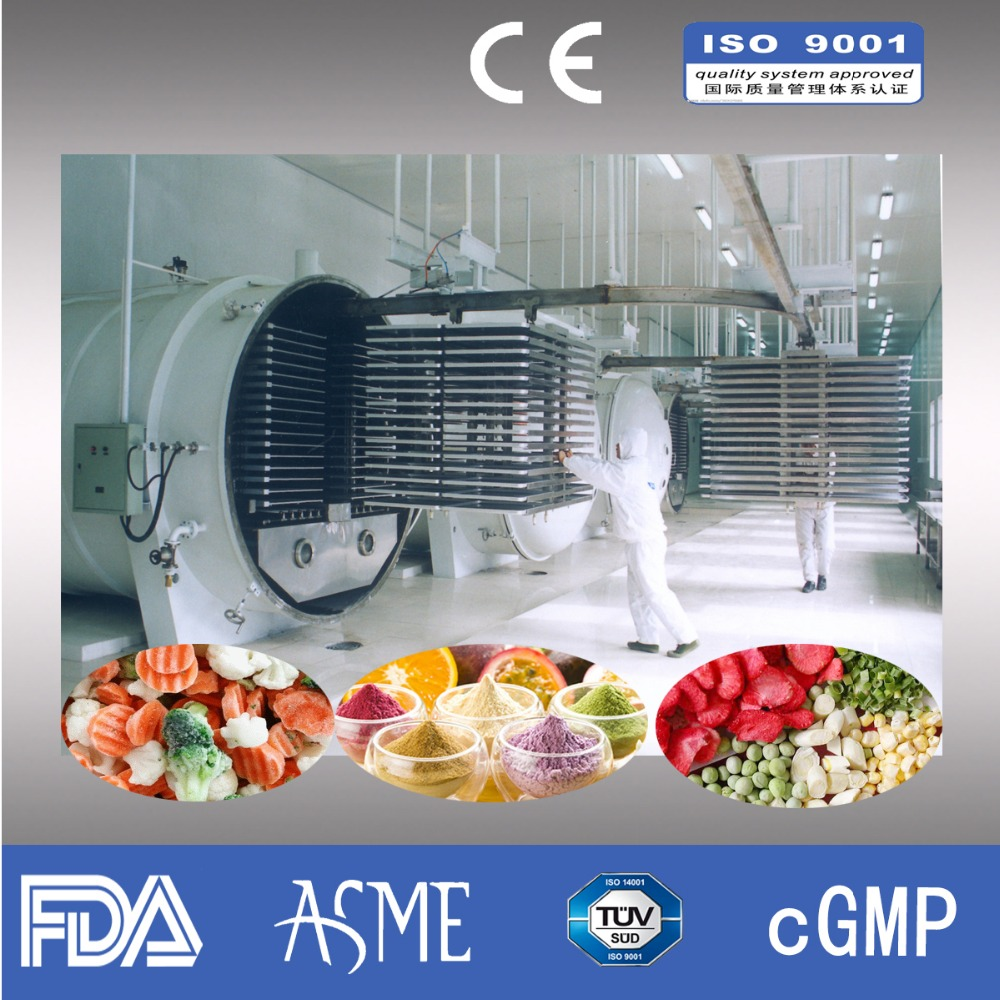 Fruits and vegetables freeze dryer/freeze drying machine price /Lyophilizer
