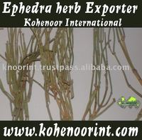 EPHEDRA SINICA (MA HUANG) herb medicine