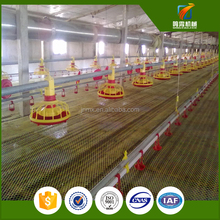 automatic poultry and chicken feeder farm local houses in africa