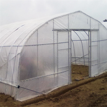 15 years warranty 100%bayer reinforced cheap plastic agriculture single span tunnel greenhouse
