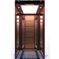 FUJI 2-5 Persons Home Elevator Manufacturer in China