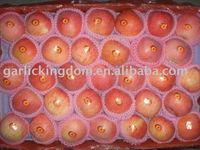 sell 2010 red star apple