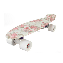 Skate board skateboard fish plastic longboard mini fish skateboard