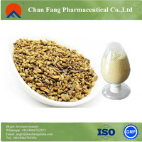 ISO22000 factory supply herb 95% rutin sophora japonica extract