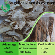 Ligustilide/GMP factory supply top quality 1% Angelica Extract Ligustilide powder for female health care