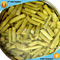 2840g canned beans production line supplying canned green beans