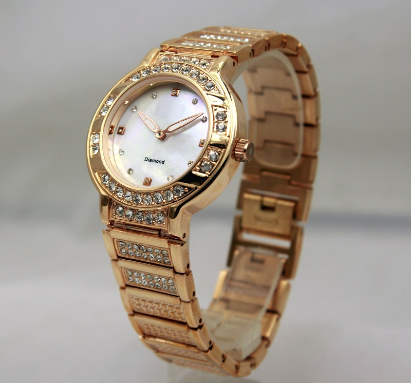 Assisi brand Lady Watch With Diamonds In Wirstwatches