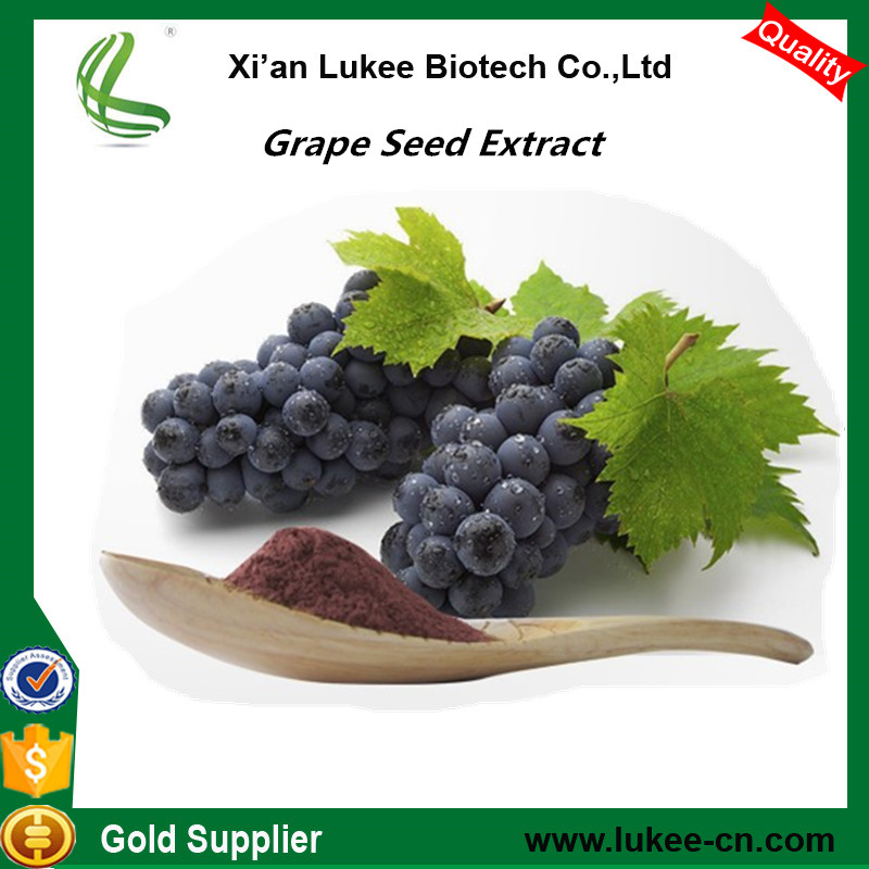 Free sample Grape Seed Extract OPC/grape seed powder(Proanthocyanidins)