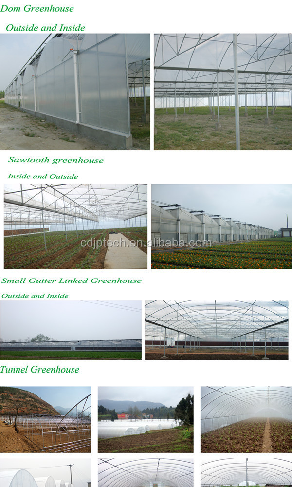 Inflatable Plastic Film Greenhouse