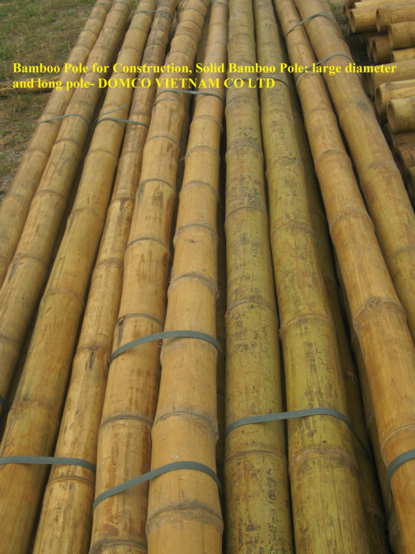 Vietnam Bamboo Poles Wholesale for Construction