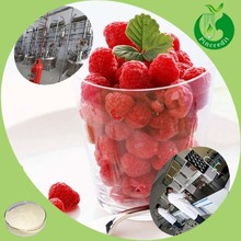 Manufacturer Hot Sale Healthy Powder Raspberry Juice Powder