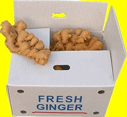 Chinese Ginger - for cooking, medicinal, seeds, industrial