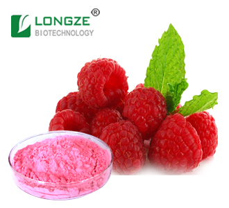 Manufacturer Supply Red Raspberry Fruit Powder with Raspberry Ketone