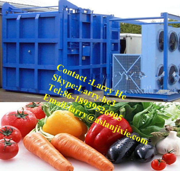 vegetable cooler/vacuum cooling machine/vacuum fruit cooler