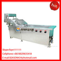 WA-1000 fruit and Pea seedlings washing machine