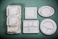 Compoatable tableware disposable tableware 6