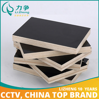 New design plastic plywood sheet with low price