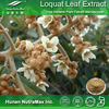 Hot sale Plant extract Ursolic acid/Loquat leaf extract/Lavender extract