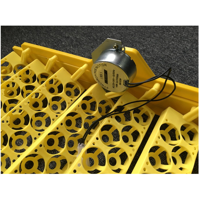 154 quail eggs tray with high quality
