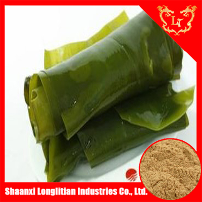 Top quality 100% pure laminaria japonica extract fucoidan